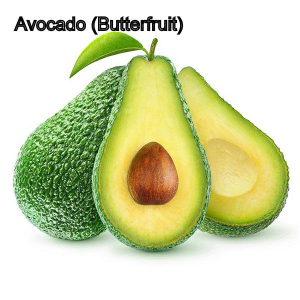 Avocado-Butterfruit