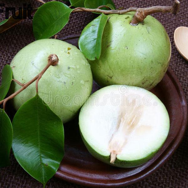 Milkfruit